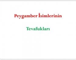 Slayt43