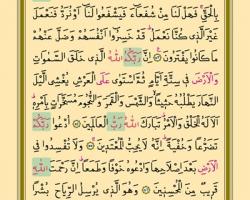 Sayfa: 156