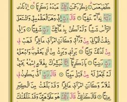 Sayfa: 304